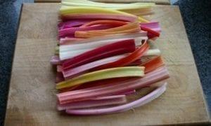 Snijbiet - veelkleurig - stengels