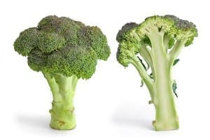 broccoli 300
