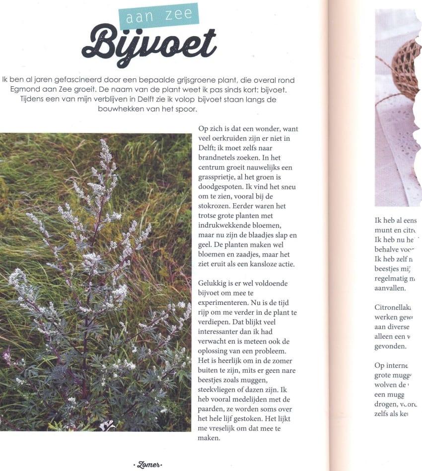 Wildplukken Bea Möllers - bijvoet 850x950