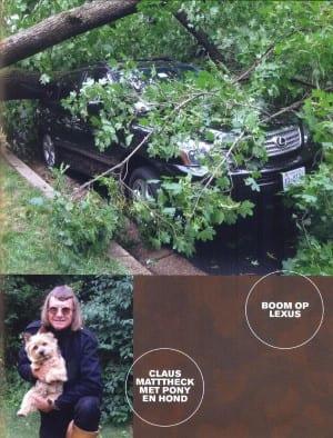De Tuin als Lusthof - boom op lexus 300x