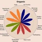 Biologische landbouw kan de wereld voeden