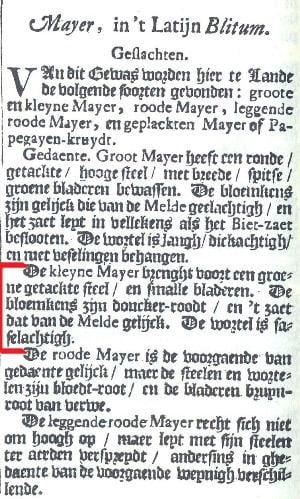 Niet uit het boek van Oostwoud, maar dit laat zien dat mayer of majer al een heel oud Nederlands gewas is.