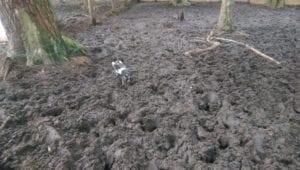 In zijn eentje in de modder
