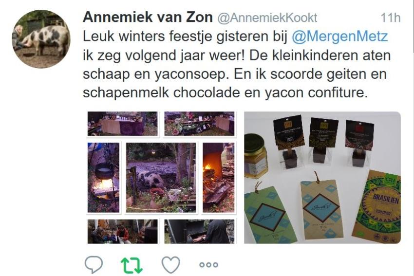 MergenMetz – Winterse Sferen – compliment Annemiek