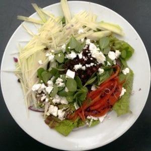 Gemengde salade met zomerpostelein
