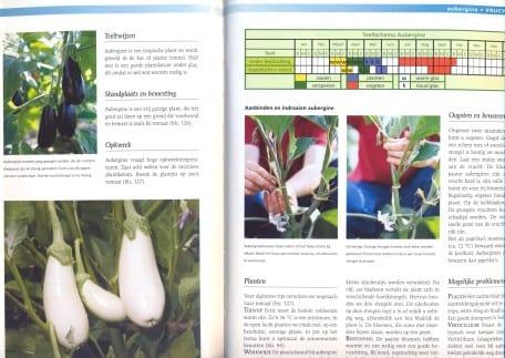 Groente- en Fruitencyclopedie Aubergine.jpg