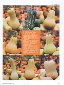 RHS butternut squash test