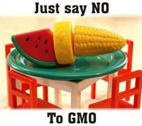 Genetisch gemanipuleerde gewassen - say no to