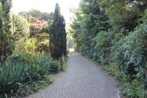 Project Eetbare Parktuin [4] 2