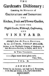 Teunisbloem - Gardeners Dictionary