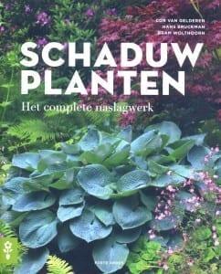 Schaduwplanten cover