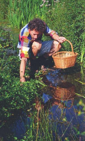 Eten uit de Buurt - wild plukken waterkers