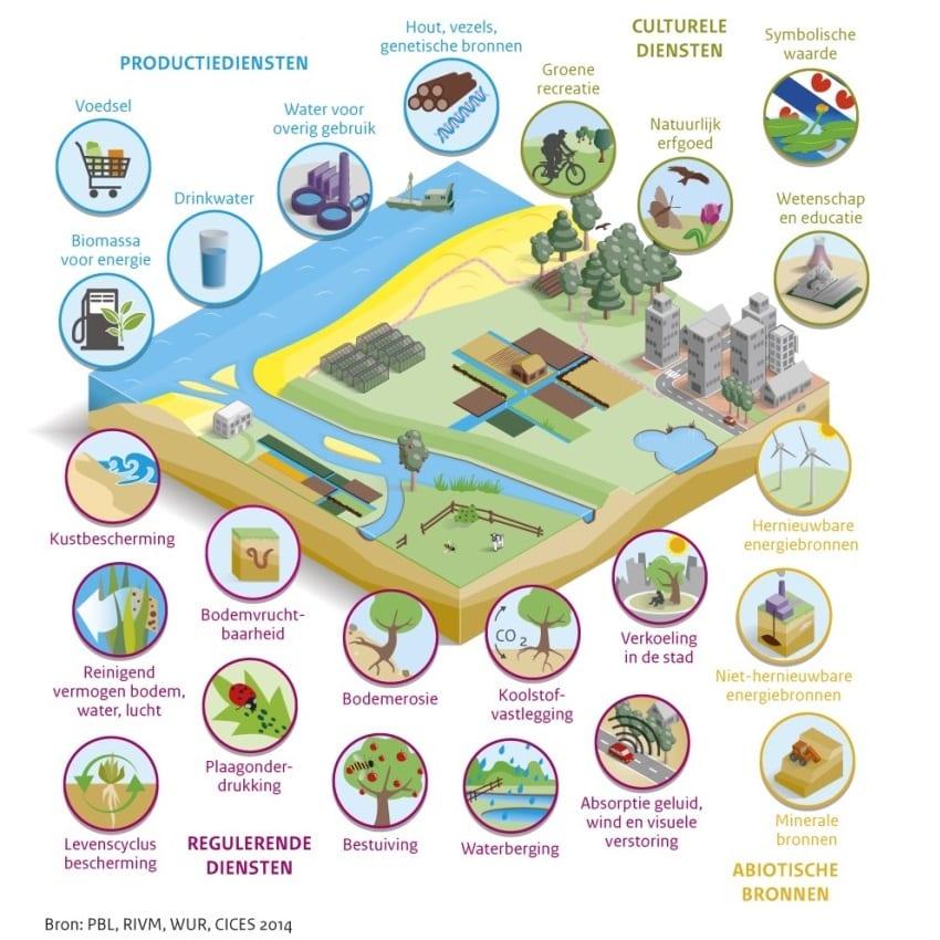 Atlas van het natuurlijk kapitaal - infographic 850x850