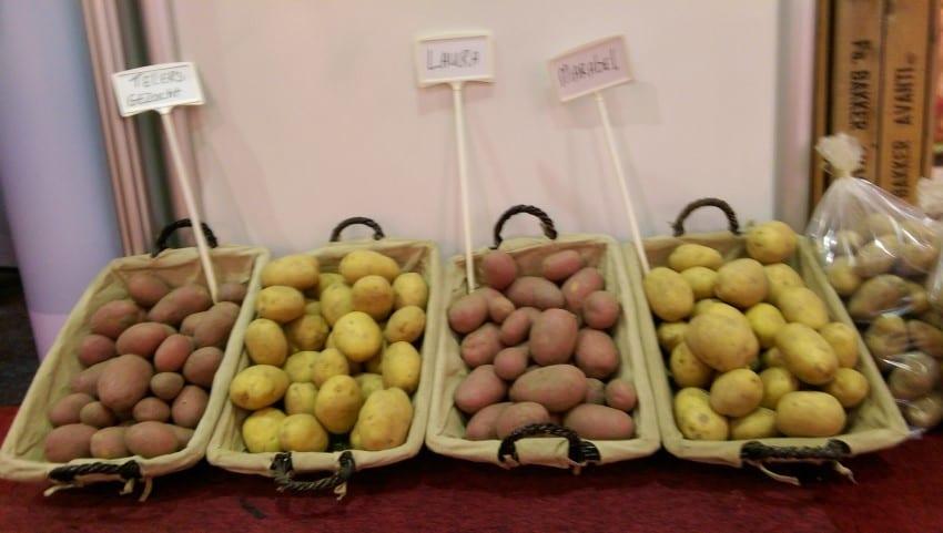 Bio Beurs 2016 – Zilte aardappelen