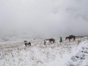 Althaj - foto in sneeuw