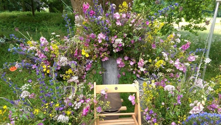 Bingerden 2016 – inheemse bloemenpracht