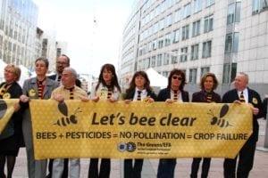 Bijensterfte - Greens EFA - Flickr