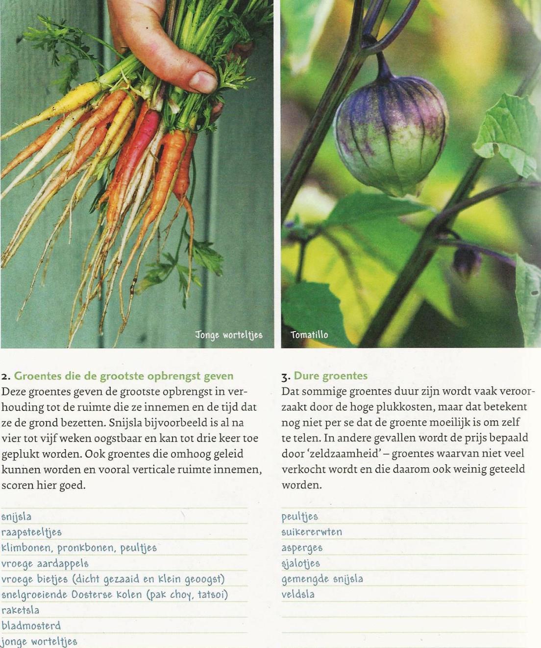 tijn-smakelijk-groentesoorten
