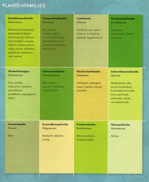 tuin-smakelij-plantenfamilies