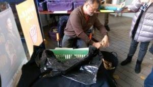 Witlofteler snijdt witlof op het marktje