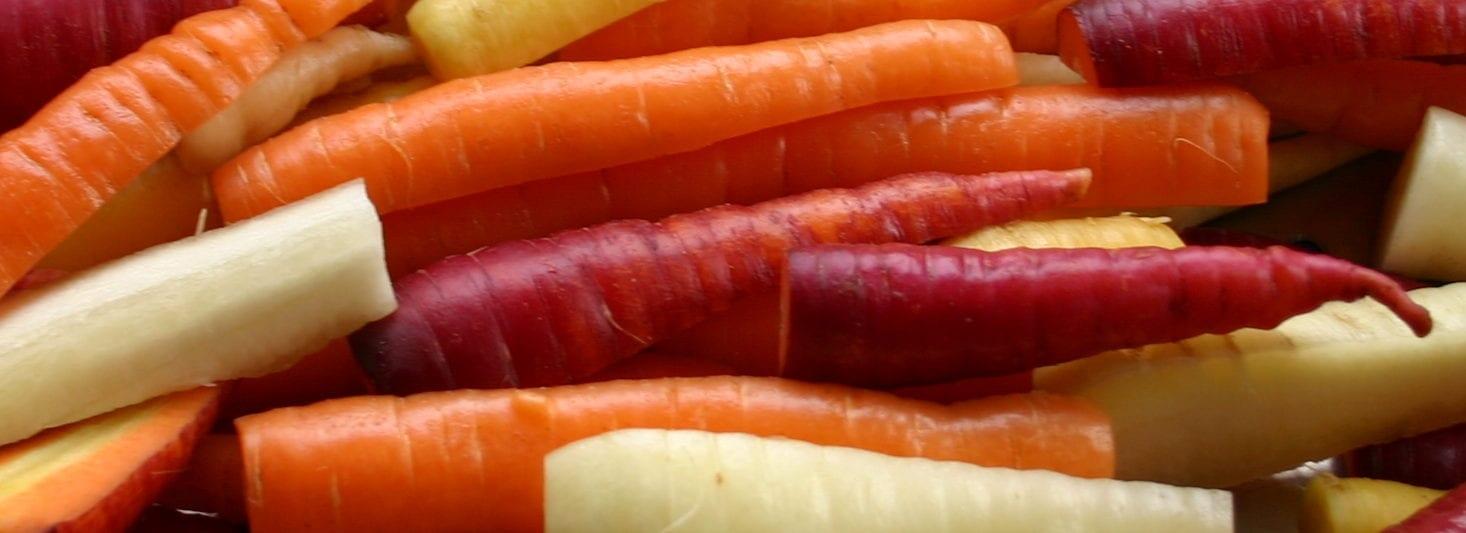 Terug naar de wortels