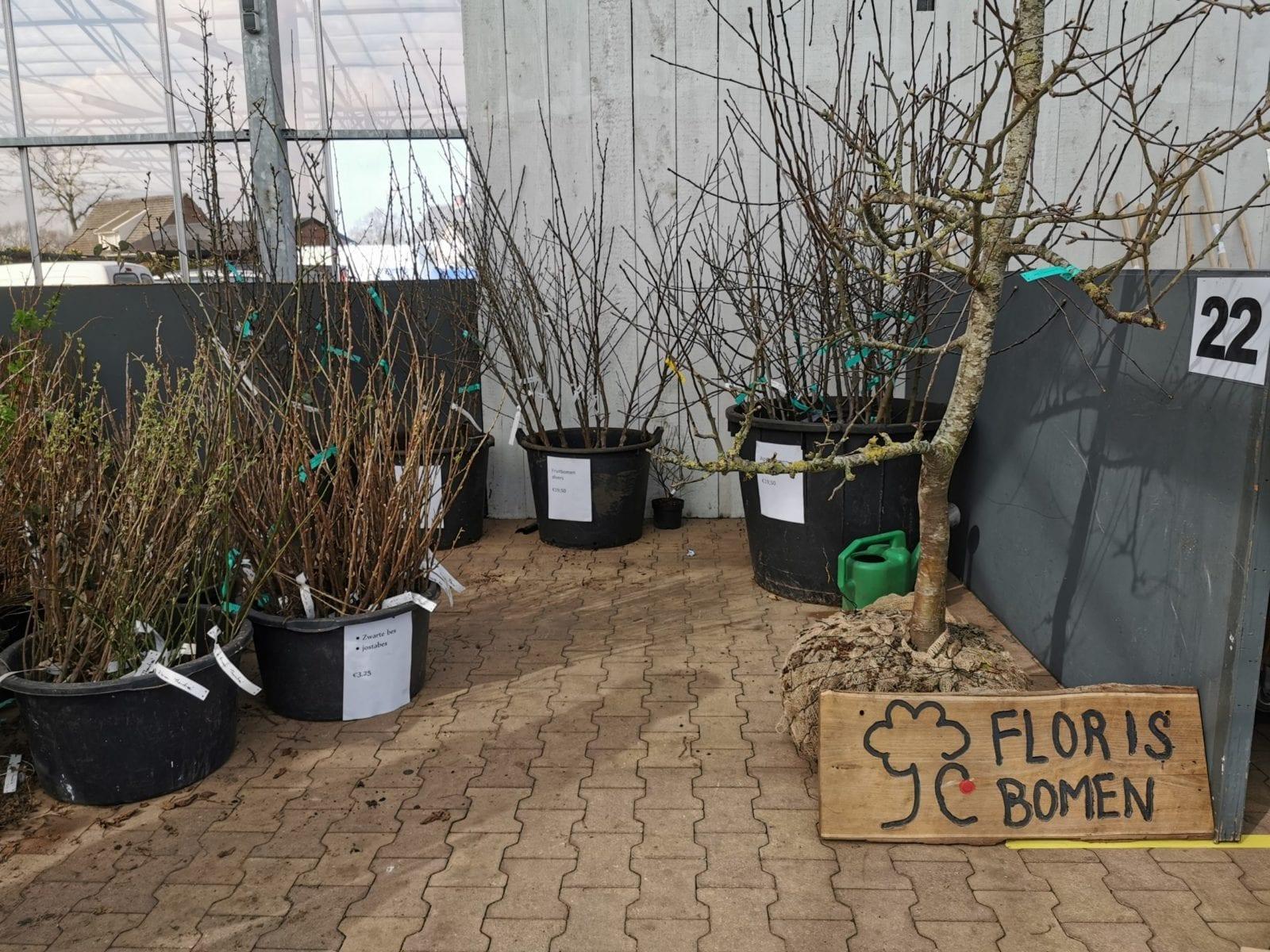 Groensmoesmarkt 2020 – Floris Bomen