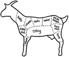 Geitenvlees - anatomie.jpg