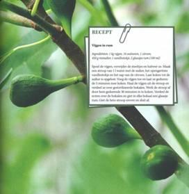 Bessen uit de Tuin 3.jpg