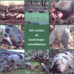 Het varken als landschapsontwikkelaar 5.jpg