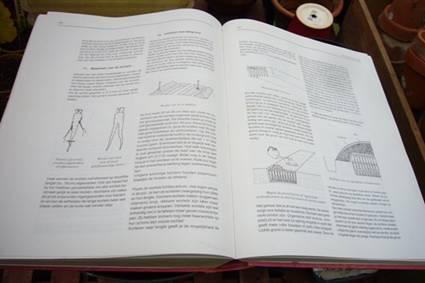 Witlof - teelt pagina s VELT.jpg